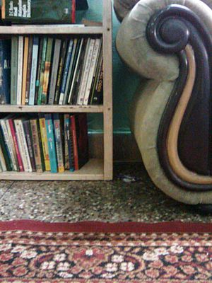 Bookcase - A bookcase in a home.