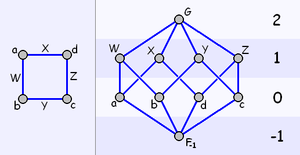 Abstract polytope - The graph (left) and Hasse diagram of a quadrilateral, showing ranks (right)