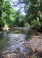 A girl washes in a local river. (10662016554).jpg