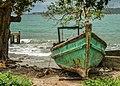 Abandoned Boat (62568393).jpeg