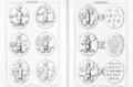 Abraxas seu Apistopistus - Talisman pg.050.png