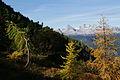Abstieg kammspitze zur kammalm 40791 2012-10-05.JPG