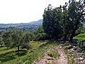 Abwärts Richtung Garda - panoramio.jpg