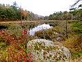 Acadia National Park (8111153263).jpg
