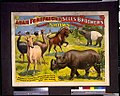 Adam Forepaugh & Sells Brothers enormous shows combined. Wondrous Sumatra, African and South-American wild beasts and birds, ... LCCN94507619.jpg