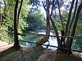 Adel's Grove - panoramio (8).jpg