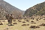 Afghan Air Force, NATC-A complete combat resupply to Kunar Valley 110414-N-SZ543-327.jpg