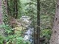 Afon Mawddach - geograph.org.uk - 488017.jpg