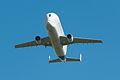 AirExpo 2014 - Beluga 05.jpg