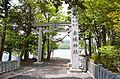 Akagi-jinja (Fujimi) torii.JPG
