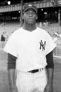Al Downing (baseball) baseball player