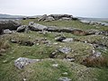 Alex Tor and cairn - geograph.org.uk - 418780.jpg