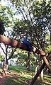 Alice, mascote da cidade - Cosmópolis - SP - panoramio (1).jpg