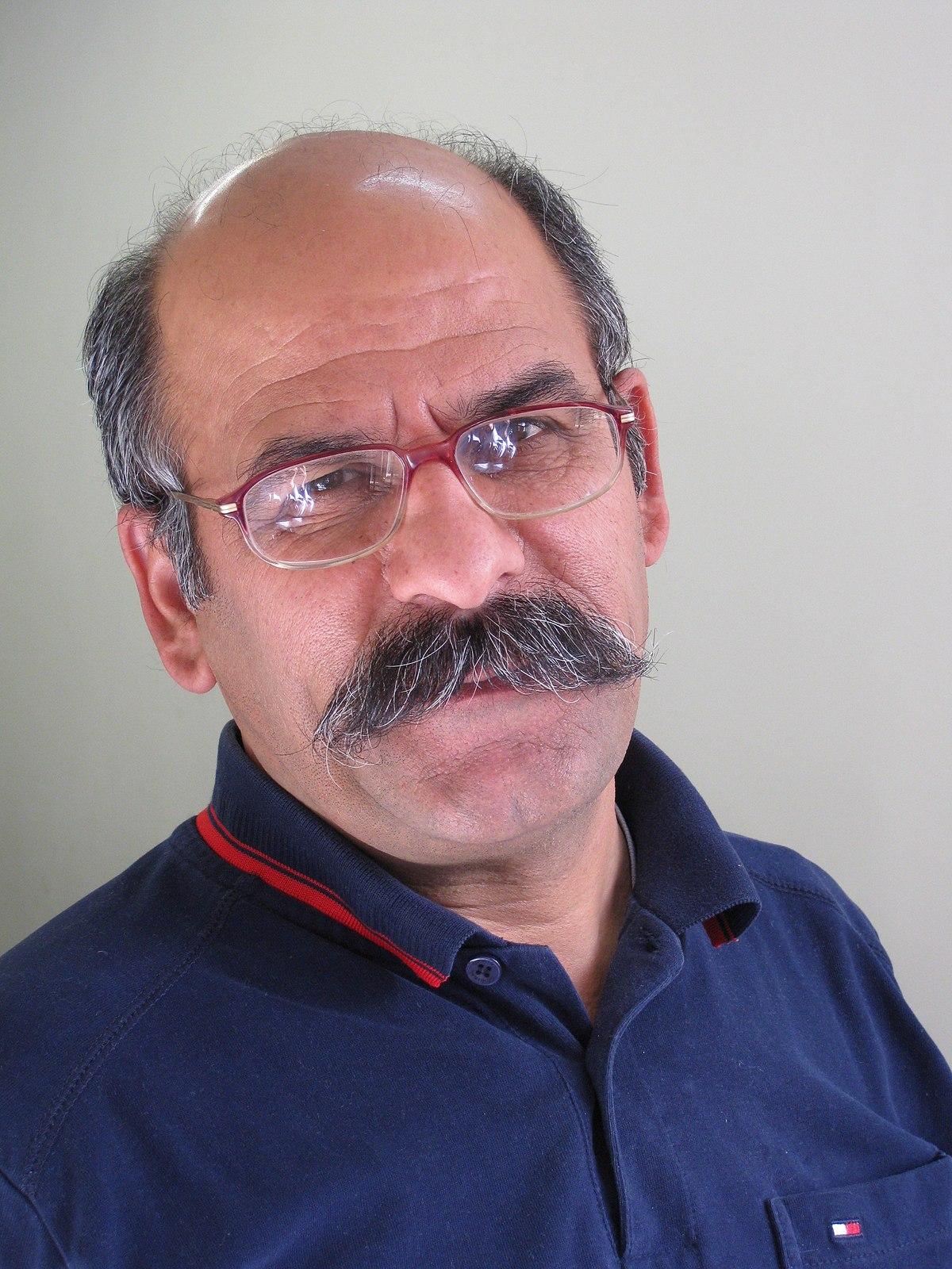 علیرضا فرزین - ویکیپدیا، دانشنامهٔ آزاد