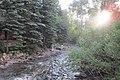 Along the Creek - panoramio.jpg