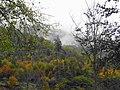 Amazing Fall In Chalus Way - panoramio (2).jpg