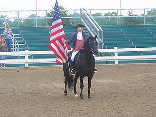 Figure (horse) small bay stallion owned by Justin Morgan