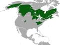 American Pygmy Shrew area.png