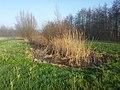Amstelveen, Netherlands - panoramio (27).jpg
