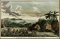 An Inland View in Atooi, One of the Sandwich Islands (1785).jpg