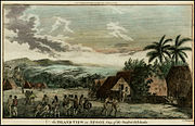 An Inland View in Atooi, One of the Sandwich Islands (1785)