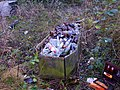 Andover - The Wellington Inn - Bottle Coffin - geograph.org.uk - 684453.jpg