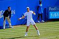 Andy Murray Queens 2012 (1).jpg