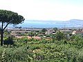 Antico Bagno Favorita (Ercolano) in 2020.20.jpg