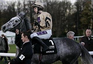 Arcalis (horse) British-bred Thoroughbred racehorse