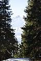 Arosa - panoramio (120).jpg