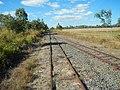 Arriga QLD 4880, Australia - panoramio (2).jpg