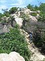 Ashiya Rock Garden19.jpg