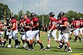 Atl Falcons training camp July 2016 IMG 7722.jpg