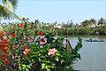 Au bord du fleuve Thu Bon (Hoi An) (4411157858).jpg