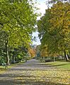 Autumn in Peel Park 3 (4017128587).jpg
