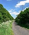 Aylestone Meadows - geograph.org.uk - 441775.jpg