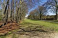 Baarn - Groeneveld - View East towards Baarn.jpg
