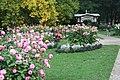 Baden-Baden, the dahlia garden, image 1.JPG