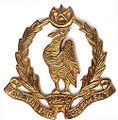Badge of Bahawalpur Regiment (1952-56).jpg