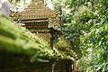 Bali 062 - Ubud - forest temple.jpg