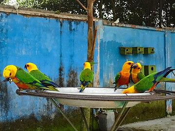 Bangabandhu Sheikh Mujib Safari Park 26.jpg