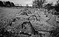 Bastogne Historic Walk 2011 (6545657749).jpg