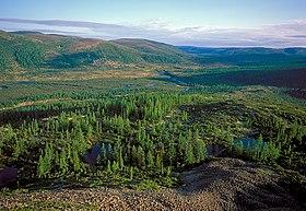 Восточно Сибирская тайга Википедия истоки реки Лена