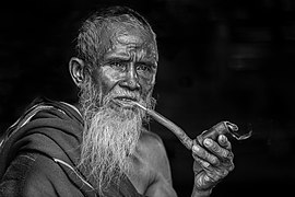 Bearded man smoking pipe-3013924.jpg