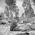 Bedoeïenen met hun kamelen temidden van resten van oorlogshandelingen in de Nege, Bestanddeelnr 255-0765.jpg