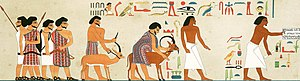 """Thebes, Egypt - Depiction of Asiatic (left) and Egyptian people (right). The Asiatic leader is labeled as """"Ruler of foreign lands"""", Ibsha."""