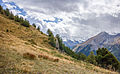 Bergtocht van Gimillan (1805m.) naar Colle Tsa Sètse in Cogne Valley (Italië). Zicht op het bergpad 03.jpg