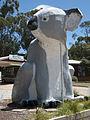 Big Koala at Cowes.jpg