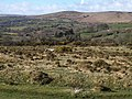 Bittleford Down - geograph.org.uk - 1229182.jpg