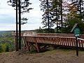 Black Forest- Ellbachsee lookout point (10562181653).jpg
